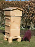 Build Your own Warre Hive with joiner beekeeper Neil Cruickshank  ...this is an example of the top bar hive you will make - Neil built this for our garden as a prototype. He uses beautiful ENGLISH CEDAR , considered one of the best woods for bees. The hive built during the workshop will contain 4 boxes, the picture show a 3 box hive.