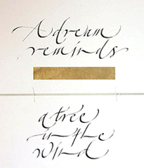 Intro to Calligraphy with Gaynor Goffe  May 2017