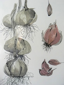 Introduction to Pen and Wash with Margaret Jarvis at Greystoke Cycle Cafe
